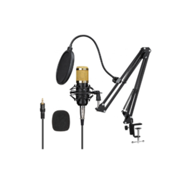 Ovegna B80 Professional Condenser Microphone with Suspension Arm for Recording Podcast PC Gamer Youtubeur (B90)