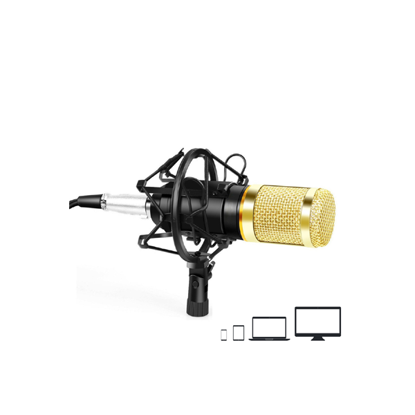 Ovegna B80 Professional Condenser Microphone with Suspension Arm for Recording Podcast PC Gamer Youtubeur (B90) Hover