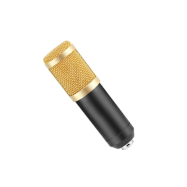 Ovegna B80 Professional Condenser Microphone with Suspension Arm for Recording Podcast PC Gamer Youtubeur (B80)