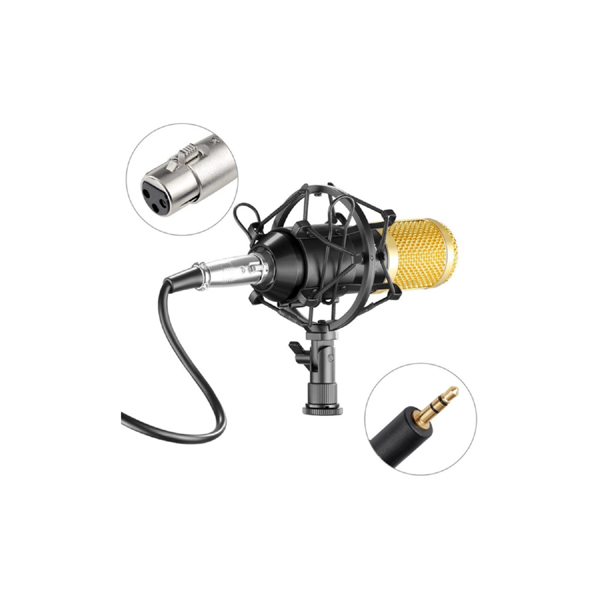 Ovegna B80 Professional Condenser Microphone with Suspension Arm for Recording Podcast PC Gamer Youtubeur (B80) Hover